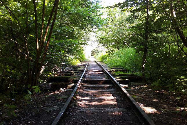 A Börzsönyben ma már csak néhány vonalon közlekednek vonatok