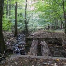 Eltűnt erdei vasutak nyomában